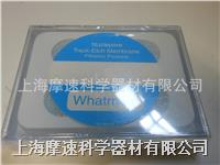 whatman聚碳酸酯膜/徑跡蝕刻聚碳酸膜和聚酯膜
