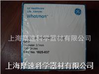 Whatman 1825-037 玻璃微纖維濾紙 0.7UM Whatman 1825-037 玻璃微纖維濾紙 0.7UM