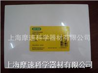 Bio-Rad/伯樂 印跡級厚濾紙, 15 x 20 cm, 25張 #170-3956 1703956 Bio-Rad/伯樂 印跡級厚濾紙, 15 x 20 cm, 25張 #170-3956