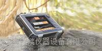 便携式高性能地质**仪 SIR-4000
