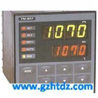 TOHO東邦溫度控制器 TTM-006 TTM-006
