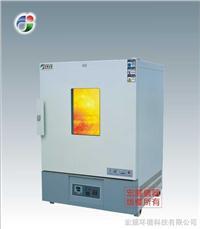 高温恒温箱 CS101
