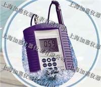 罗威邦DO200溶解氧仪 DO200溶解氧测定仪防水