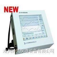 桩基低应变检测仪 ZBL-P810A型