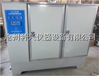 水泥标准养护箱 SHBY-60B型
