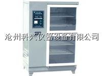 砼标养箱/养护箱 SHBY-40B型