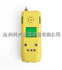 泵吸式氧气检测仪 CY30/B型