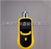 泵吸式氨气检测仪 SKY2000-NH3型