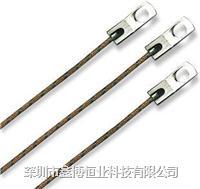 WT螺栓固定墊圈式熱電偶