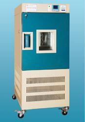 药品稳定性试验箱 YWS-500S