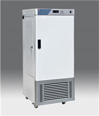 人工气候箱 RGX-300E
