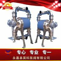 卫生级电动隔膜泵 YKDW