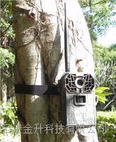 **彩信数据传输红外监控摄像机AM-999/高清拍照可以选配太阳能电池供电