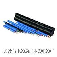 天津電纜|橡套線 yc,ycw,yz