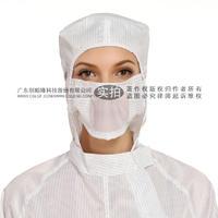 防靜電口罩 CS6681300