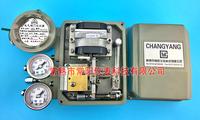 ZPD2000電氣閥門定位器