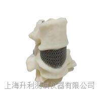 3D打印真空鉬絲爐