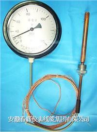 壓力式溫度計 WTZ-280  WTQ-280