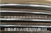 氟塑料絕緣聚氯乙烯護套耐高溫控製電纜 ZR-KFVP4-2.5