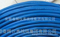 ZR-BAVP3V阻燃本安防爆計算機電纜 ZR-BAVP3V  ZR-BAVP3VP3