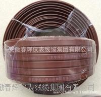 中溫自限溫基本型電熱帶 CH-ZBR-J  ZBR-TS  ZHR