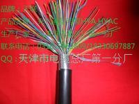 屏蔽通信电缆 ZRC-HYAP规格使用 ZRC-HYAP