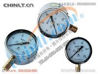 YE-100 膜盒壓力表 YE-100