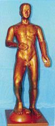 運動式古銅色人體針灸模型(85CM)|上海红杏视频永久科教設備有限公司  H014