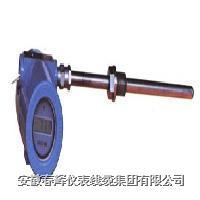 一體化防爆熱電阻 WZPB-240