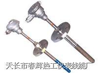 耐磨阻漏熱電偶 WRN-430M WRE2-430M