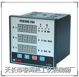 2010智能電力監測儀