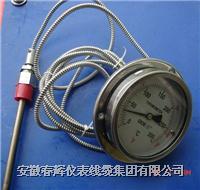 WTZ,WTQ系列軸向全不銹鋼壓力式溫度計 WTZ,WTQ