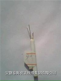 雙支陶瓷鉑電阻 WZP2-020