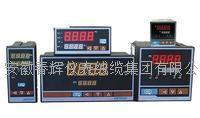 SWP-RP系列頻率/轉速表