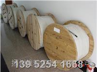 船用電纜 - 船用通信電纜 CHJPF86/SC