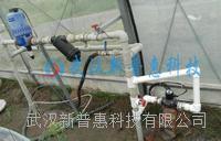 智能温室灌溉智慧节水灌溉解决方案 PHWSGG