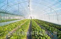2018温室物联网温室大棚环境智能实时监控系统 PHWSJK
