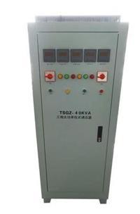 电动调压器 TDGC2     TSGC2