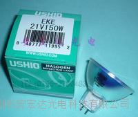 日本優良 EKE21V150W顯微鏡鹵素燈杯