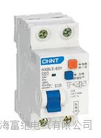 NXBLE-63Y小型漏电断路器 NXBLE-63Y