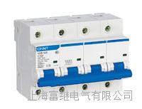 NXB-125小型断路器 NXB-125/3P