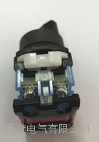 AR22WR-311B旋钮开关 AR22WR-311B