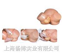 分娩培训模型|高级助产训练模型 CBC-8