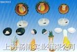 计生模型|人胚受精.卵裂和胚泡形成过程模型 SMO003