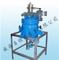 氢化釜 WHF