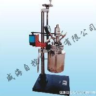 磁力高壓反應釜 WHFSK