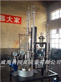 聚合反应釜 WHF