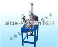 实验室用反应釜5L WHFS-5L