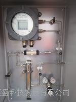 在線氫氣純度分析儀 8866