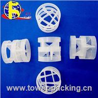 Plastic Pall Ring